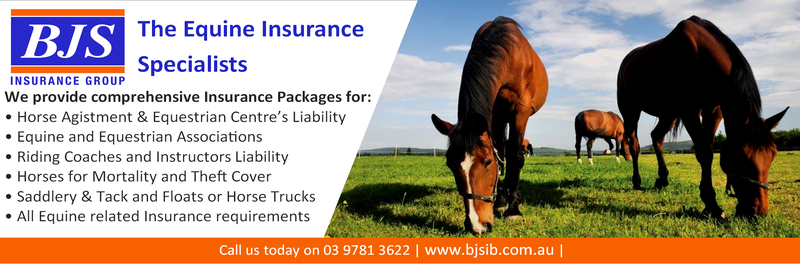 BJS Equine Insurance